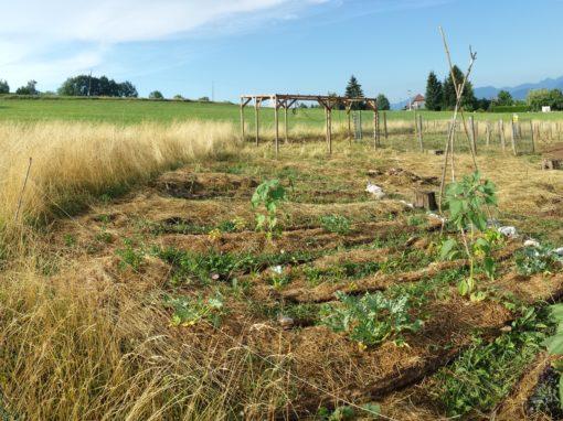 Création de la cour d'école Montessori du pays Rochois en permaculture