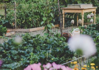 Conseil aux jardiniers hésitants!